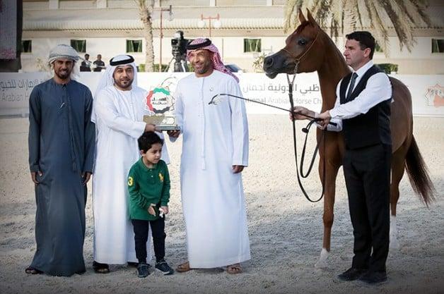 ذهبيتان وفضية لـ«عجمان» في بطولة أبوظبي الدولية 2019