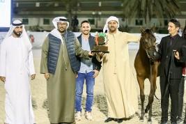 مربط دبي يحصد 5 ميداليات ملونة في أبوظبي الدولية 2019 بالإضافة الى كأس زايد