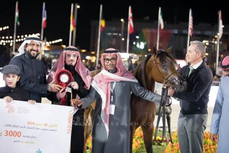 صور مقتطفة من اليوم الأول من بطولة الشرقية 2019 لجمال الخيل العربية الأصيلة