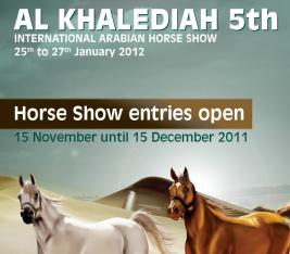 خالد بن سلطان : «مهرجان الخالدية» سيكون بمستوى العام الماضي … وربما أفضل
