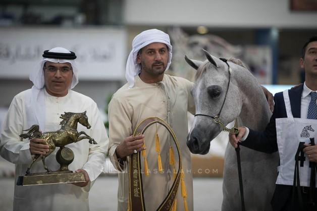 5 ميداليات ملونة لمربط دبي في ختام مهرجان الشارقة الدولي
