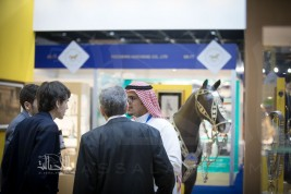 Dubai International Horse Fair to shine the spotlight on the scientific advances making equine healthcare as sustainable as it is digital