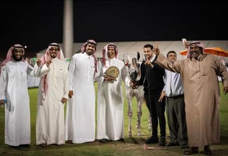 النتائج النهائية للنسخة العاشرة من البطولة الوطنية 2019 لجمال الخيل العربية بالأحساء
