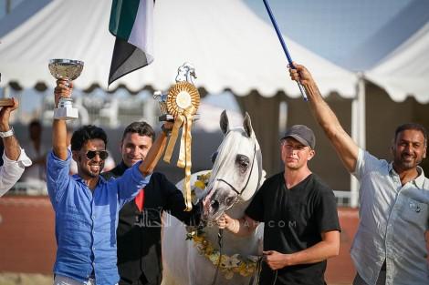 النتائج النهائية بالصور لبطولة منتون 2019 الدولية لجمال الخيل العربية الأصيلة