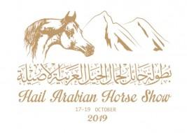 عبدالعزيز بن سعد يعتمد شعار بطولة حائل للخيل العربية 2019 ويعد بأن تكون الأهم في المنطقة