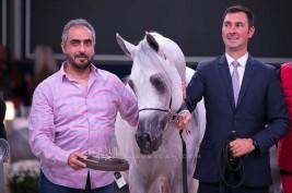 نتائج اليوم الأول لبطولة كأس كل الامم آخن 2019 لجمال الخيل العربية الأصيلة
