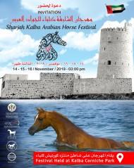 برعاية سمو الشيخ الدكتور سلطان بن محمد القاسمي تنطلق بطولة كلباء لجمال الخيل يوم الخميس المقبل