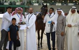 النتائج النهائية لبطولة مكة المكرمة 2019 لجمال الخيل العربية