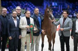 نتائج اليوم الثاني لبطولة العالم باريس 2019 لجمال الخيل العربية