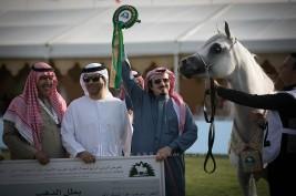 النتائج النهائية بالصور لبطولة مركز الملك عبدالعزيز  2019 الدولية لجمال الخيل العربية