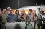 """البديعة """"بيبيتا"""" تستعيد مكانتها كأفضل فرس وتهدي مربط أكمل ذهبية مركز الملك عبدالعزيز"""