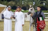 خيول «عجمان» تخطف الأضواء وتحقق ذهبيتين وفضيتين ببطولة الشارقة ٢٠١٩ للإنتاج المحلي