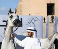 أحمد اليماحي: ثقة الملاك ضعيفة في العارض العربي! والشيخ زايد بن حمد هو من شجعني للظهور بهذا الزي!