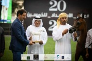 Dubai Arabian Horse Stud lands 2 gold medals in 2020 Ajman Arabian Horse Show