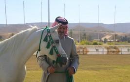 سمو الأمير بندر بن خالد يزور مركز الملك عبدالعزيز للخيل العربية الأصيلة