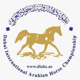 اللجنة المنظمة لبطولة دبي للجواد العربي 2020 تؤكد قيامها في موعدها