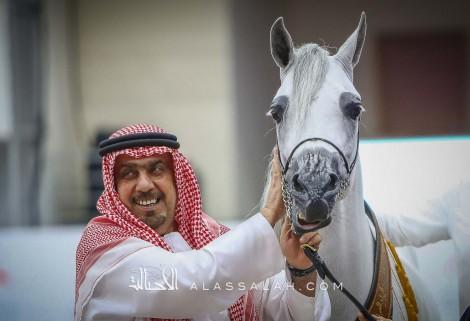 صور مقتطفة من بطولة الشارقة الدولية ٢٠٢٠ لجمال الخيل العربية