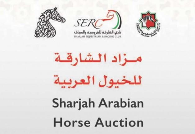 قائمة مزاد الشارقة للخيول العربية تحتوي 75 خيلاً وتقام في 17 اكتوبر المقبل
