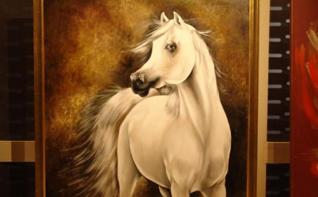 """الخيول العربية فى """"الهناجر"""""""