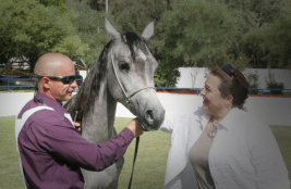الأميرة عالية ترعى البطولة الوطنية للخيول العربية الاصيلة