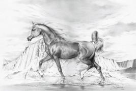 الخيول: من السعودية إلى مهرجان رويال أسكوت.. معرض في المتحف البريطاني