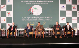 90% من سلالات الخيول العربية الأصيلة في الإمارات