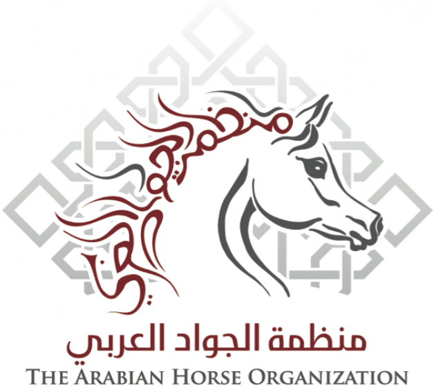 برعاية منظمة الجواد العربي يبدأ اليوم حفل سباق المارثون الاول للخيل العربية الاصيلة