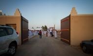 «التنهاة» يعلن عن اقامة مهرجان النخبة الثاني للخيل العربية في يناير المقبل