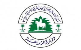 بطولات جمال الخيل العربية المقترحة لعام 2014م بالسعودية