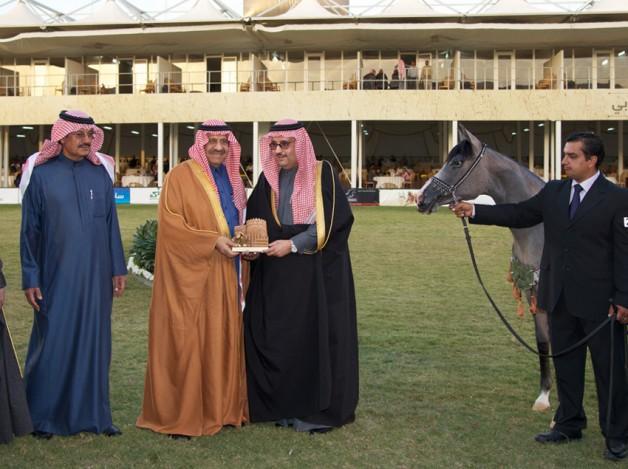 النتائج النهائية لبطولة جمال الخيل السعودية