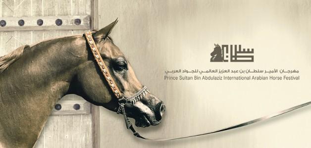 البث المباشر لمهرجان الأمير سلطان بن عبدالعزيز العالمي للخيل العربية ٢٠١٣