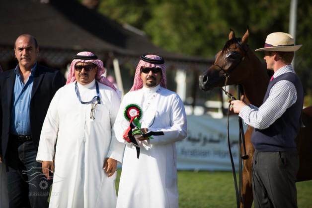 «المعود» يواصل حصده للجوائز في بطولة أبو ظبي.. وعينه على الذهب