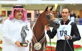 النتائج النهائية لأبطال بطولة الشارقة الدولية لجمال الجواد العربي