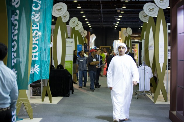 """""""دبي الدولي للخيل"""" يواصل تألقه لليوم الثاني بمركز دبي التجاري العالمي"""