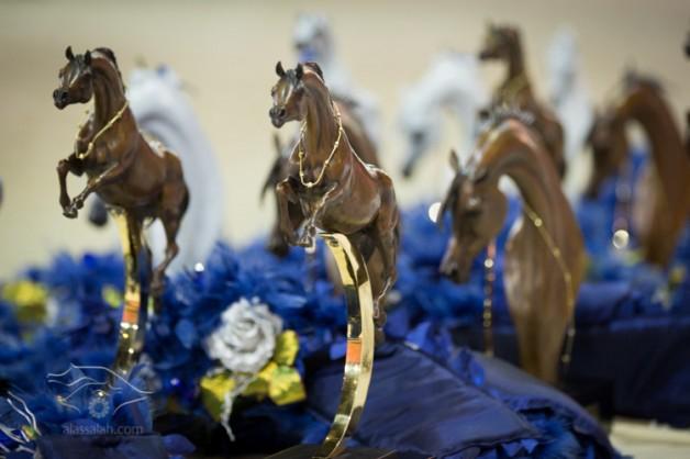 9 منافسات تقام في اليوم الثاني من بطولة دبي للجواد العربي و (الأفحل) الأكثر إثاره ..
