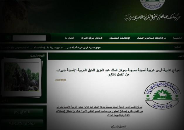 مركز الملك عبدالعزيز بديراب: عدم تجاوب اسطبلات الخالدية سبب التأخير والنماذج تنشر بعد ظهر اليوم