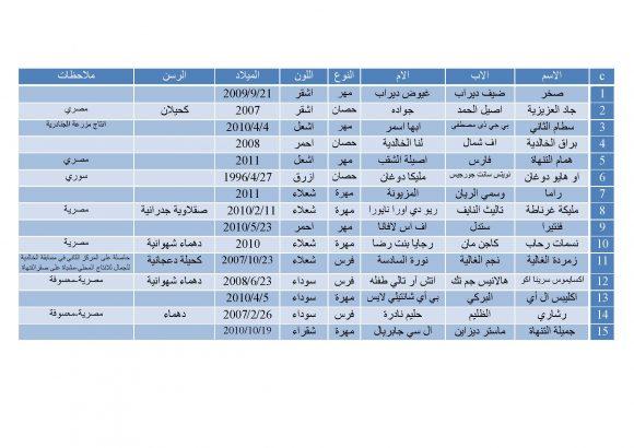 قائمة مزاد التنهاة 25_Page_2