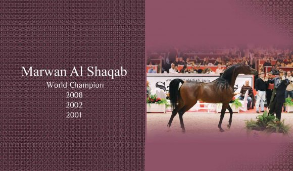 Auction2012-CATALOG(high)_Page_04