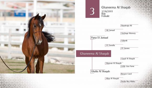 Auction2012-CATALOG(high)_Page_12