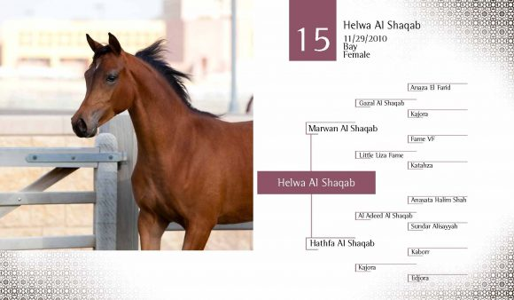 Auction2012-CATALOG(high)_Page_24