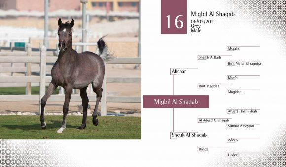 Auction2012-CATALOG(high)_Page_25