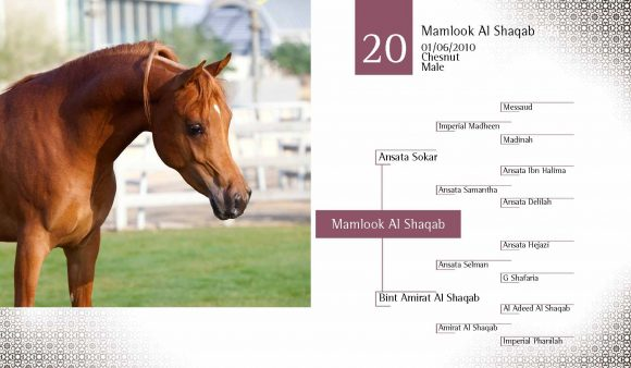 Auction2012-CATALOG(high)_Page_29