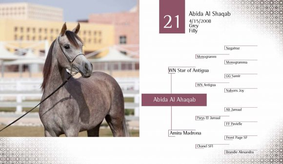Auction2012-CATALOG(high)_Page_30