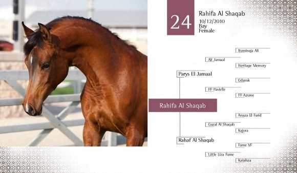 Auction2012-CATALOG(high)_Page_33