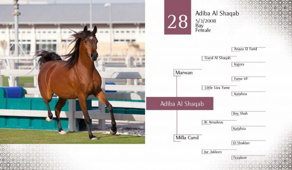 Auction2012-CATALOG(high)_Page_37