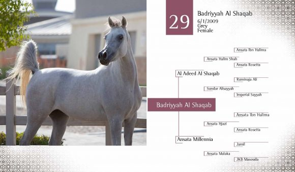 Auction2012-CATALOG(high)_Page_38