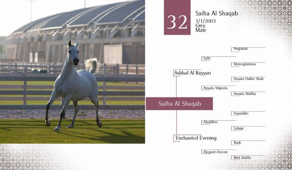 Auction2012-CATALOG(high)_Page_41