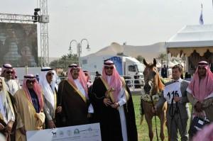 يو ال سيد بارما والعائد لصاحب السمو الملكي الأمير سعود بن سلطان بن سعود بن عبدالعزيز