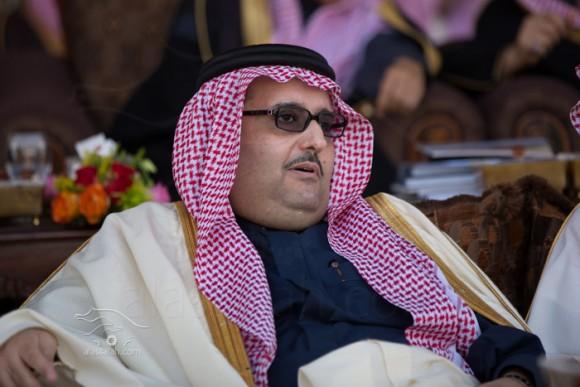 عبدالعزيز بن أحمد