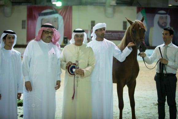 دي خطاف – مربط دبي